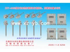ZOY-0402型自动加热防爆型氧化锆探头、防爆型氧量分析仪