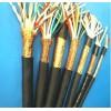 生产销售DJVPVP22铠装计算机电缆