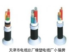 10KVYJV高压电缆生产厂家