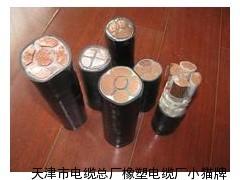 生产国标3*10+1*6电缆