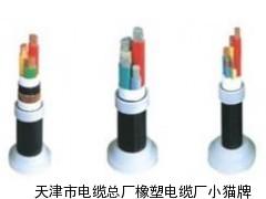 KVVP2控制电缆生产厂家