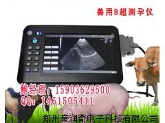 专业羊用B超机价格,给羊测怀孕的B超机