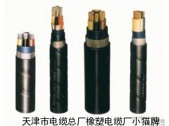 小猫牌硅橡胶电缆制作工艺 精品保证 专业制造