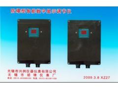XZJZ-5000TH型智能温湿度防爆数显控制仪