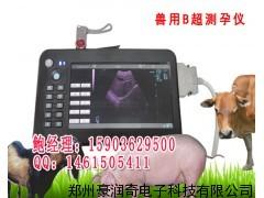 奶牛专用测孕仪器便携式B超厂家直销