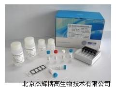 (NOS3)试剂盒说明书兔内皮型一氧化氮合酶ELISA试剂盒