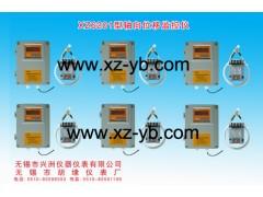XZ6021-G墙挂式轴向位移监控仪