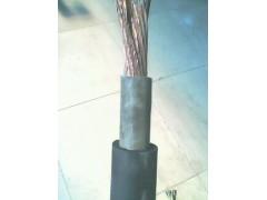 WDZB-BYJ-4*2.5-电缆线