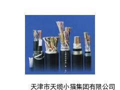 聚氯乙烯绝缘全塑通信电缆HYA
