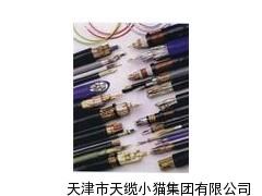 20芯铠装矿用通信电缆MHYA32