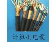 阻燃计算机电缆ZR-DJYPV,计算机屏蔽电缆DJYPV