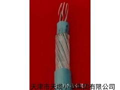 阻燃铠装通信电缆MHYA32 30x2X0.8矿用通信电缆