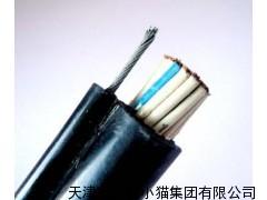 ZR-DJYVP2阻燃计算机电缆批发