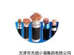 ZR-DJYPVP阻燃计算机屏蔽电缆