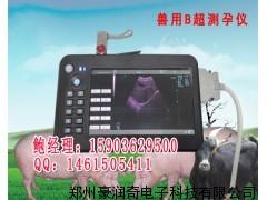 兽用B超马牛45-55天怀孕配种成功诊断准确率