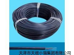 ZR-HYAT通信电缆 天津ZR-HYAT阻燃通信电缆