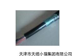 地埋通信电缆MHYV22 100×2×0.5