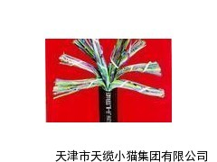 河北HYAP 屏蔽通信电缆优质厂家