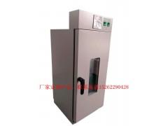 定制特殊规格烘箱,厂家定做干燥箱,定做烘箱