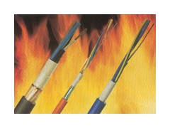 WDZNH- YJV 5*10低烟无卤耐火交联电力电缆