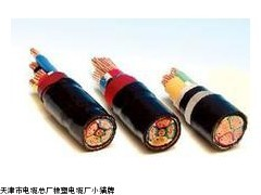 阻燃电力电缆YJV电缆