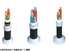 电力电缆VV22电力电缆