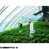 WH/PH-WS 北京温室控制系统