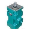 YB-D100/63,中高压双联叶片泵