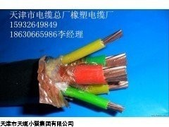 天津电缆价格/变频器专用电缆BP-VVPP2 BP-YJVP
