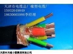 天津电缆价格/BPVVPP2变频电缆结构图报价,