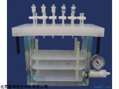 北京固相萃取装置GH/DG-12价格,多氯联苯有机物分析仪