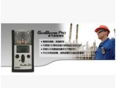 美国英思科氨气NH3气体检测仪,GBpro氨气气体检测仪