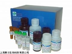 大鼠D-乳酸ELISA Kit,试剂盒