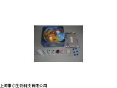 大鼠促甲状腺激素(TSH)ELISA Kit,试剂盒