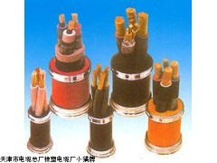 电力电缆 YJV32电缆