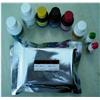 大鼠皮質醇(Cortisol)ELISA 試劑盒廠家