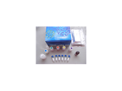 "<span style=""color:#FF00FF"">大鼠γ干扰素(IFN-γ)Elisa试剂盒厂家</span>"