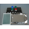 斑馬魚卵膜蛋白(ZRP)ELISA試劑盒免費代測