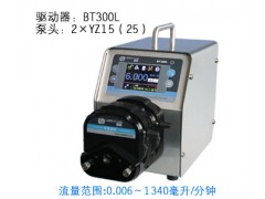 BT300L蠕动泵/恒流泵,双通道蠕动泵/恒流泵,流量型泵