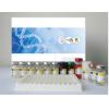 人5-羟色胺受体3(5-HTR3)ELISA试剂盒试剂盒