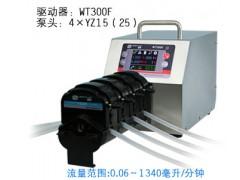 WT300F蠕动泵/恒流泵,工业灌装蠕动泵,长沙工业灌装泵
