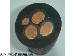 天津国标YQS轻型防水橡套电缆厂家经销商
