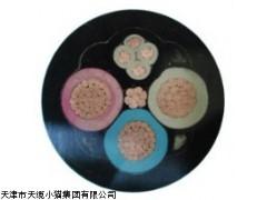 天津市电缆总厂橡塑电缆厂生产YQS防水橡套电缆