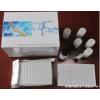 人肺表面活性物质相关蛋白B(SP-B)ELISA试剂盒