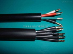 KFVP控制电缆,KFVP-2*2.5屏蔽耐高温电缆