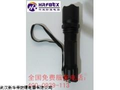 SH309强光电筒 SH309防爆强光电筒