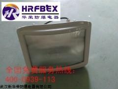 GT301-G-L150防水防尘防震防眩灯 GT301泛光灯