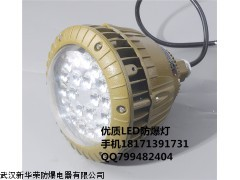 BC9501-L40 LED防爆投光灯 60W 25W