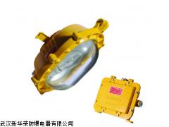 ZL8900-J70防爆泛光燈ZL8900-J70防爆工作燈