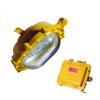 ZL8900防爆节能泛光灯 70W 100W 150W